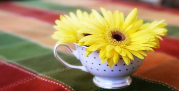 NEW-WEB-SPRING-TEA