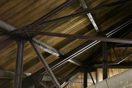 Wed IMG_5287 Joists